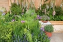 Online Plants and Shrubs – very successful, well established East Midlands